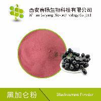 黑加仑粉    提高免疫力