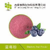 厂家现货供应 蓝莓粉 喷雾干燥蓝莓粉