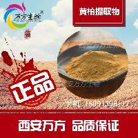 西安万方生物厂家供应 黄柏提取物粉