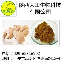 供应生姜提取物姜辣素5%