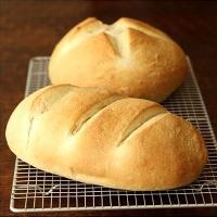 广食园 面制品改良剂 面包改良剂 复配糕点面包改良剂 500g装