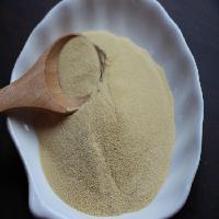 蛋白含量80以上蛋白粉 全国热销 蛋白胨