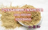 现货供应生姜粉姜汁浓缩速溶粉食品级 姜辣素 生姜提取物