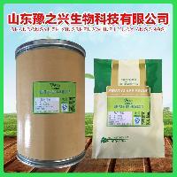 传明酸 祛斑美白圣品 量大从优 品质保证 专业供应 99% 氨甲环酸