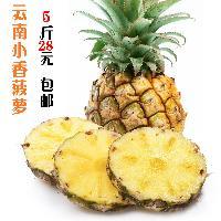 云南新鲜小香菠萝热带新鲜小香菠萝非越南泰国迷你小凤梨5斤包邮