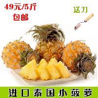 进口泰国小菠萝 新鲜热带水果普吉岛迷你菠萝5斤装香水凤梨包邮