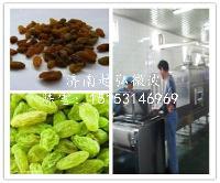微波干果、果脯烘干灭菌设备生产厂家