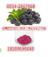 现货供应黑莓粉-喷雾干燥 黑莓浓缩汁粉 特价热销 酸梅粉