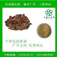 石榴皮提取物 鞣花酸90% 现货供应