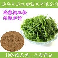 海藻多糖 海藻提取物