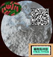 活菌100亿/g 希禾专业供应 植物乳杆菌 冻干型乳酸菌原菌粉