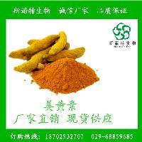 姜黄素 HPLC95%  姜黄提取物