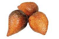 冠捷生物 蛇皮果提取物 厂家生产