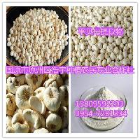 平贝母提取物 比例提取物10:1 速溶粉 浸膏粉 浓缩粉