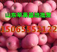 山东苹果基地批发 红富士i苹果今日价格行情