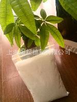 食品级白砂糖木棉花玉棠牌白砂糖培根东星袋纯甘蔗糖50kg粗糖一般要多少钱图片