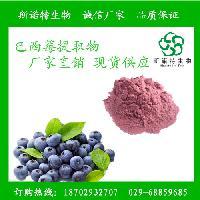 巴西莓提取物10:1 巴西莓速溶粉 巴西莓粉 包邮