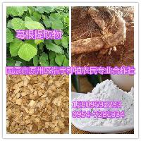 葛根素80%  阿魏酸99%  高含量为白色针状结晶粉末,属于黄酮类
