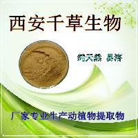 杜仲叶水溶粉 纯天然植物提取物杜仲叶提纯粉