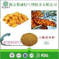沙棘提取物 沙棘黄酮  沙棘速溶粉   沙棘浓缩粉自有种植基地