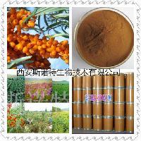 沙棘提取物 10:1  沙棘浸膏  斯诺特厂家现货供应