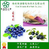 蓝莓粉 全水溶速溶果粉 食品饮料原料 斯诺特生物 欢迎咨询订购