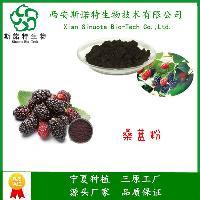 桑葚粉 天然果蔬粉 食品饮料粉 常年现货 斯诺特生物 三原工厂