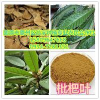 枇杷叶提取物 10:1含量枇杷叶提取粉 纯天然野生枇杷树叶提取