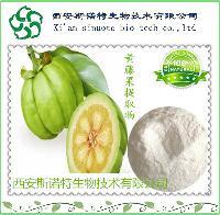 藤黄果提取物20:1 斯诺特厂家直销 羟基柠檬酸  藤黄果粉