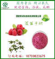 覆盆子黄酮  树莓酮5% 覆盆子提取物 树莓提取物