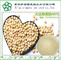 大豆蛋白粉  斯诺特厂家直销  1KG起订 现货大豆营养粉