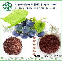 葡萄籽提取物   原花青素98%   斯诺特现货葡萄籽粉