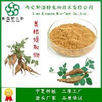 葛根提取物 20:1 水溶性棕色粉末 西安斯诺特 多种规格可选