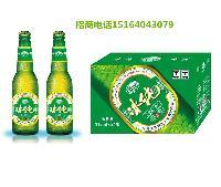 KTV小瓶啤酒代理,330毫升酒吧新款啤酒招商