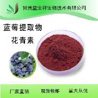 甘肃益生祥 蓝莓提取物花青素25%  厂家现货 包邮