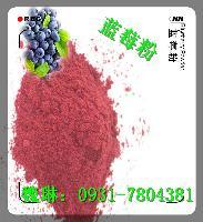 蓝莓提取物  蓝莓粉厂家   批发价格
