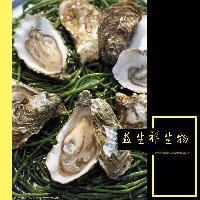 牡蛎提取物10:1 牡蛎多肽 牡蛎浸膏 牡蛎酵素