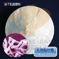 100亿/g 乳双歧杆菌 饲料级乳酸菌原菌粉益生菌种 动物双歧杆菌
