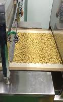 五谷杂粮烘焙设备