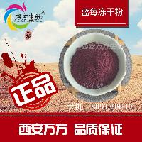 西安万方-蓝莓冻干粉-全新上市 厂家直销