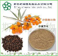 沙棘籽提取物20:1  斯诺特 沙棘籽固体饮料  沙棘籽黄酮