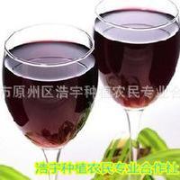 葡萄醋粉   葡萄酵素粉 葡萄粉 厂家直销 宁夏 浩宇