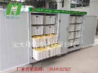 小型豆芽机多少钱 多功能豆芽机哪里卖的好