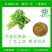 芹菜籽提取物 芹菜素 芹菜浸膏粉 包邮