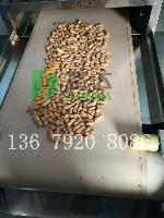 新疆干果干燥设备