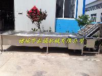 供应黄瓜专用清洗机---山楂清洗机---清洗机厂家