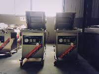 小康牌DZ-400/2L单室真空包装机