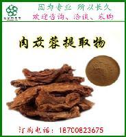 肉苁蓉提取物 管花肉苁蓉提取物 松果菊苷  斯诺特种植基地