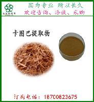 卡图巴提取物20:1 卡图巴树皮粉  进口原料    斯诺特  新货出炉
