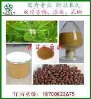葫芦巴提取物   98%葫芦巴碱  葫芦巴籽提取物 斯诺特现货供应
